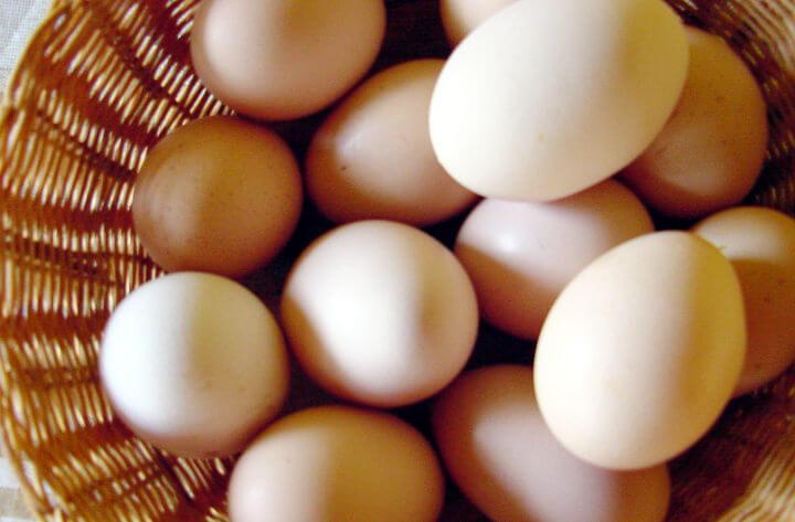 Análise | A crise dos ovos do Santa Cruz, entre o pitoresco e a política interna