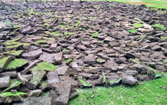 Os gramados dos 10 estádios do Pernambucano 2019. Todos com 105m x 68m