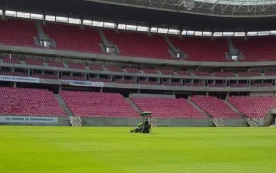 Análise | O possível precedente aberto pelo Governo de PE sobre público nos estádios